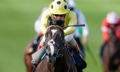 Andrea Atzeni riding Royal Champion win The Rossdales EBF Stallions Maiden Stakes during day one of The Cambridgeshire Meeting at Newmarket Racecourse.
