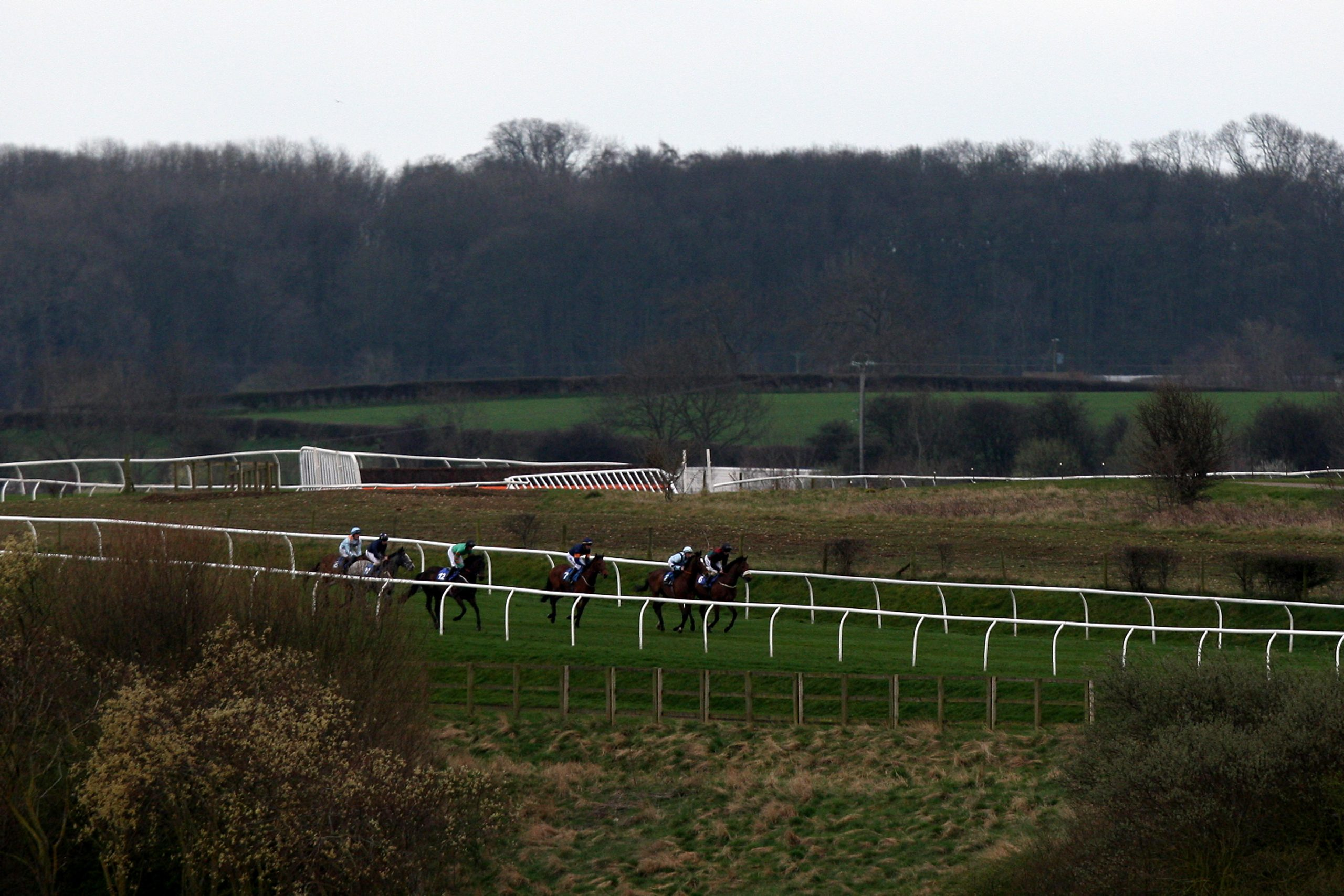 Runners and riders in the William Hill Maiden Stakes make their way around Catterick Racecourse