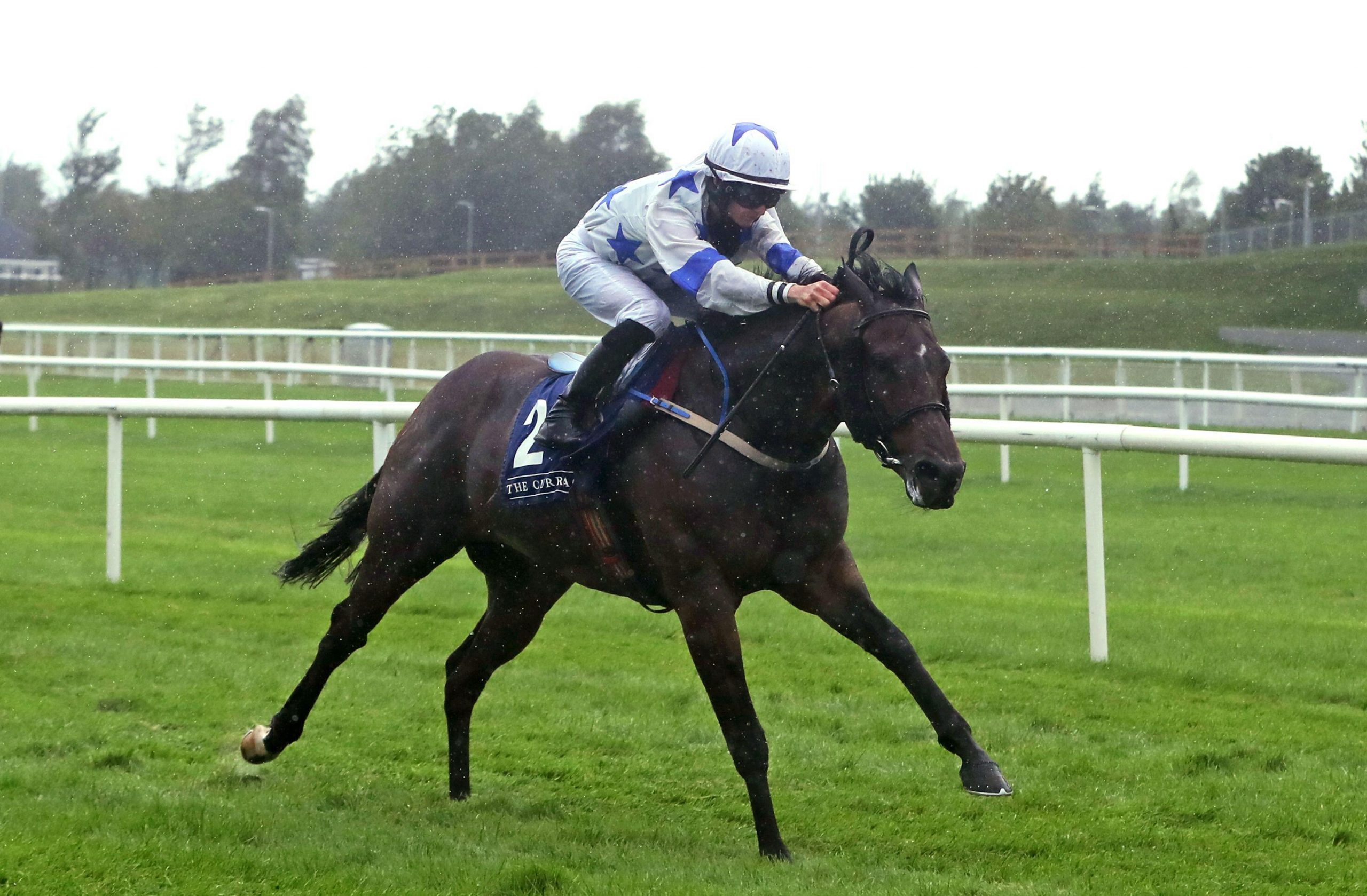 Make A Challenge ridden by Joe Doyle on their way to winning the A.R.M. Holding Curragh Sprint Stakes at Curragh Racecourse.