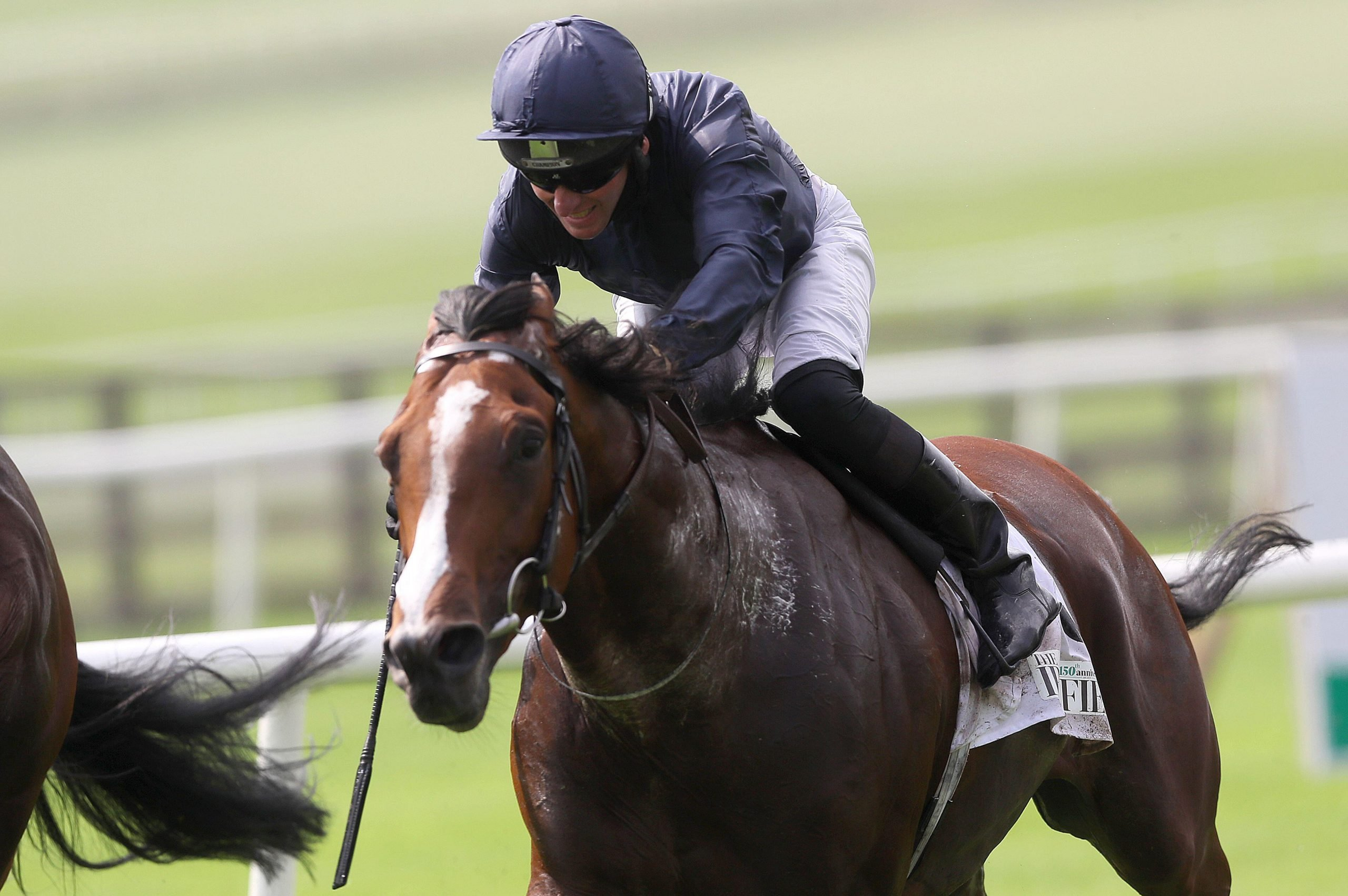 Armory ridden by Seamie Heffernan gets up to win The Irish Field Celebrating 150 Years Royal Whip Stakes at Curragh Racecourse, Co. Kildare, Ireland.