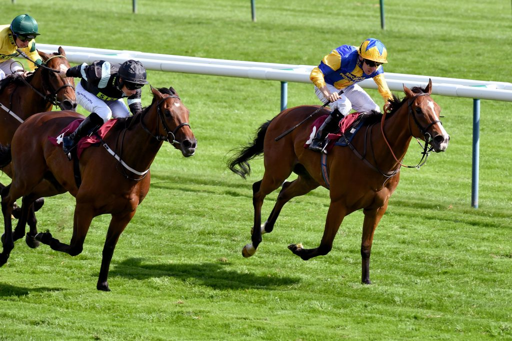 JGMJEP Hart Stopper ridden by Jamie Spencer (right) beats Scofflaw ridden by Adam McNamara to win The Bet365 Handicap Stakes during bet365 Old Newton Cup Day at Haydock Park Racecourse.