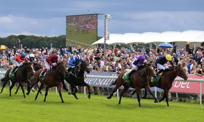 Japan (second right) ridden by Ryan Moore wins The Juddmonte International Stakes ahead of Crystal Ocean (right) ridden by James Doyle in second during Juddmonte International Day of the Yorkshire Ebor Festival at York Racecourse.