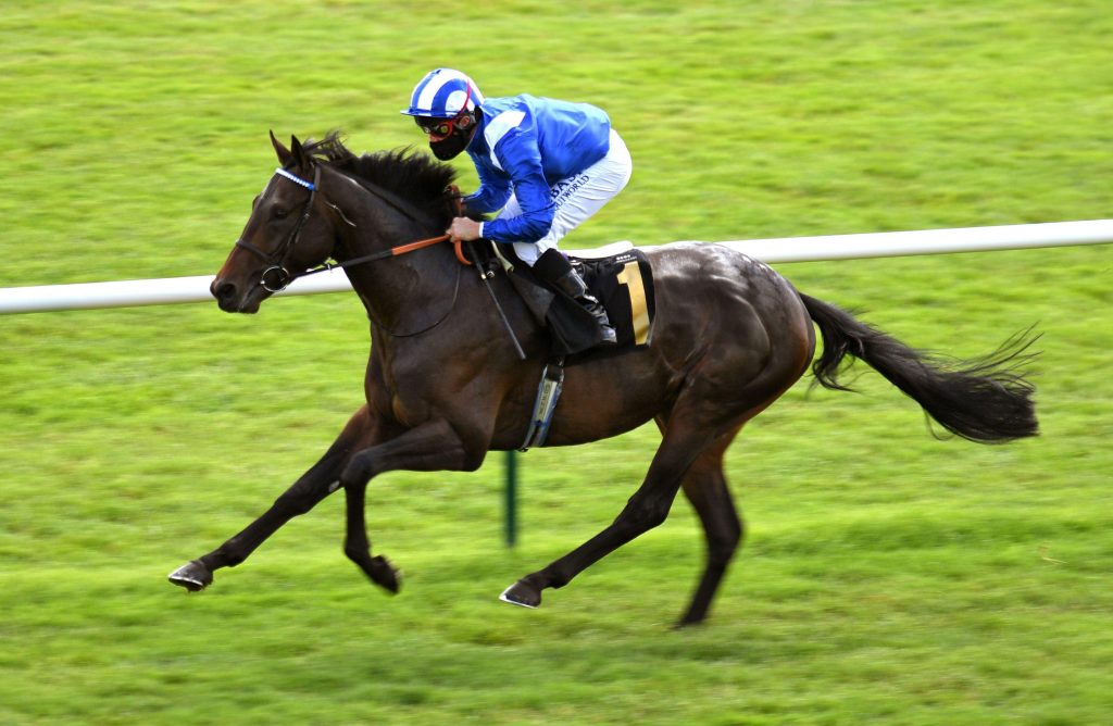 2C2XW3A Al Aasy ridden by Dane O'Neill wins the Betway Novice Stakes at Newmarket Racecourse.