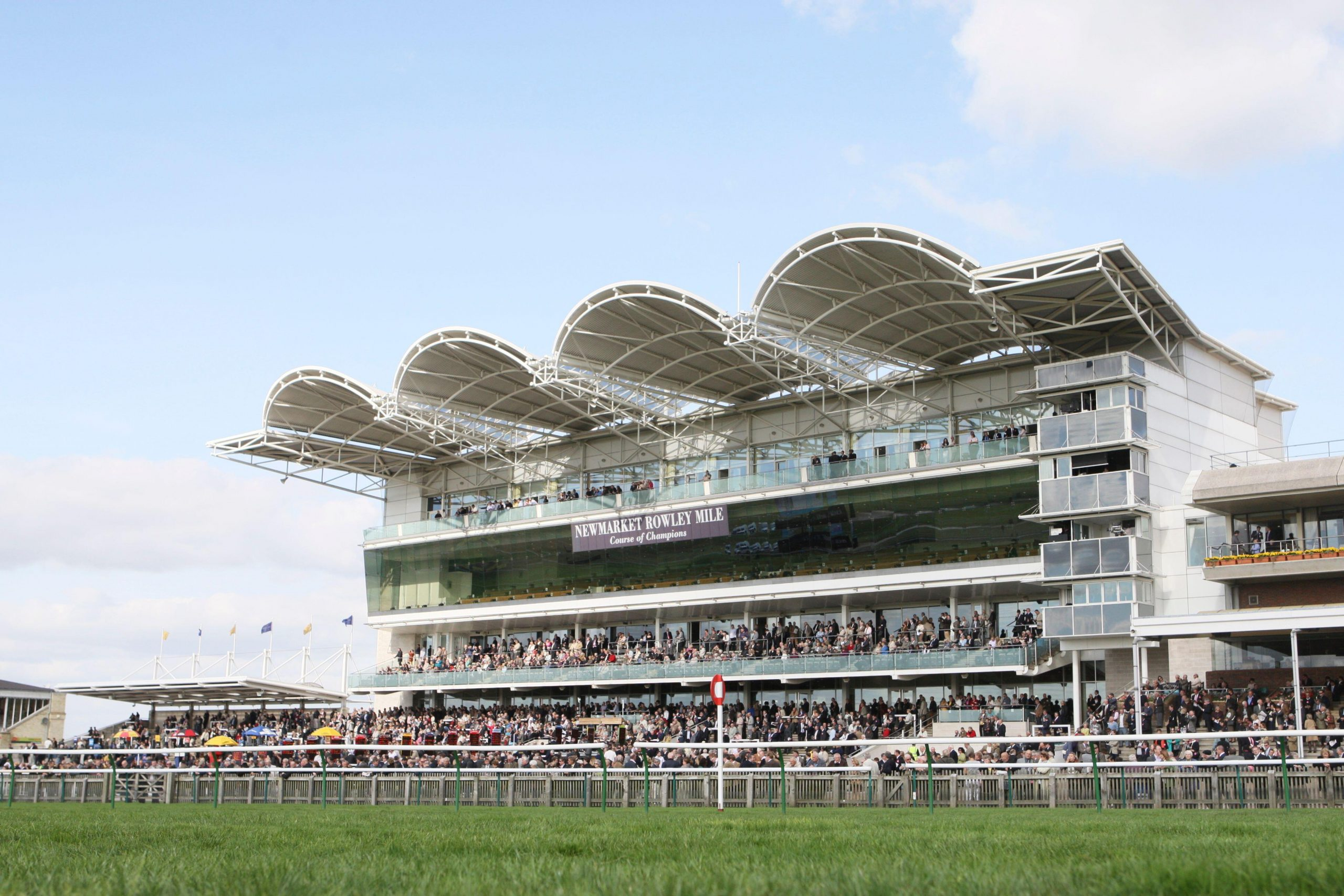 Newmarket Races General Tracker